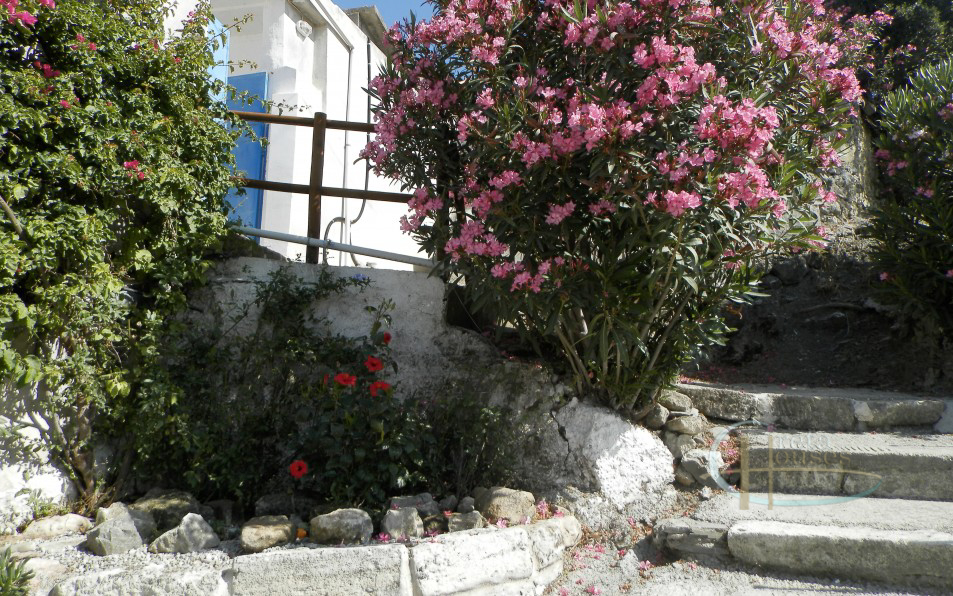 Magarikari south Crete Renovated stone house with separate guest